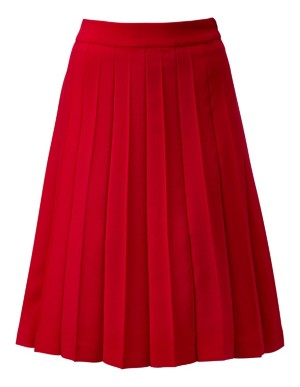 Flared pleated skirt