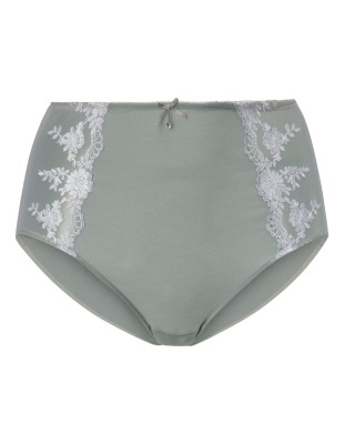 High-waisted briefs with embroidered mesh